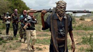 Boko Haram Serbu Pangkalan Militer Kamerun