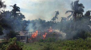 Pernyataan Sikap Bersama MUI dan GUIB Jawa Timur Tentang Genosida Muslim Rohingya