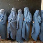 Departemen Pendidikan Afghanistan Senang Taliban Kendalikan 219 Sekolah di Provinsi Herat