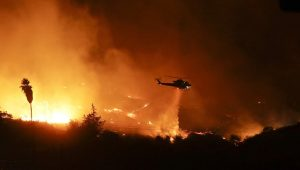 Trump Deklarasikan Bencana Kebakaran Besar Selang Beberapa Hari Resmikan Ibukota Israel