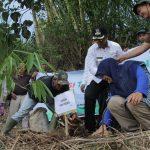 Sinergi Foundation Tanam 947 Bibit Bambu di Selaawi Garut