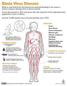 Serangan Mematikan Virus Ebola Makin Mengganas di Guinea