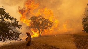Seluas 80.940 Hektar, 17 Kota Besar Alami Kebakaran di Negara Bagian California