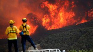 Korban Tewas Kebakaran California Meningkat, 11.000 Bangunan Hangus 1.300 Orang Hilang