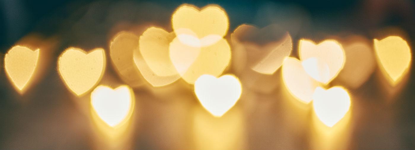Nutrisi yang Menghidupkan Hati