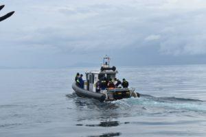 Gunakan Perahu Motor, Wahdah Peduli Terus Salurkan Bantuan Korban Gempa Halmahera
