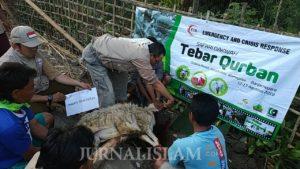 ECR Indonesia Salurkan Hewan Kurban di Desa Pelosok Banjarnegara